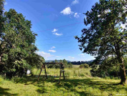 Photo of 39392 Richardson Gap Rd, Scio, OR 97374-9355 (MLS # 747558)