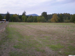 Photo of 27030 Alsea Deadwood (TL #3700) Hwy, Alsea, OR 97324 (MLS # 699042)