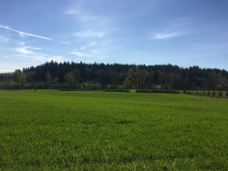 Photo of Helmick (Parcel #2) Rd, Monmouth, OR 97361 (MLS # 716361)