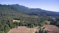 Photo of 33435 North Fork Rd SE, Lyons, OR 97358 (MLS # 721024)