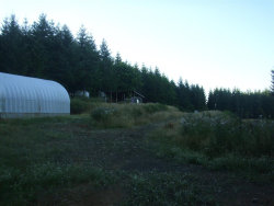 Photo of 6801 McTimmonds Rd, Dallas, OR 97338 (MLS # 721619)