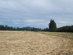 Photo of River Dr, Lebanon, OR 97355 (MLS # 722911)