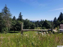 Photo of 3777 Meeko Ln SE, Turner, OR 97392 (MLS # 730529)