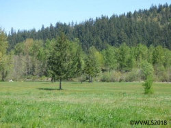 Photo of 2309 Robbins Wy, Lebanon, OR 97355 (MLS # 734404)