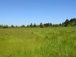 Photo of Spring Valley (Lot #700) Ln NW, Salem, OR 97304 (MLS # 735203)