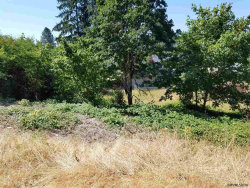 Photo of 1107 N Scenic View Dr, Stayton, OR 97383 (MLS # 736521)
