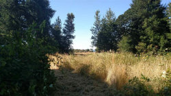 Photo of 9945 Wells Landing Rd, Independence, OR 97351-9796 (MLS # 736774)