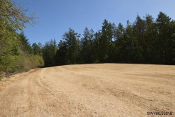 Photo of 14653 Old Mehama Rd SE, Stayton, OR 97383 (MLS # 738233)