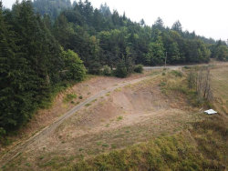 Photo of SW Peavine Rd, McMinnville, OR 97128 (MLS # 738257)