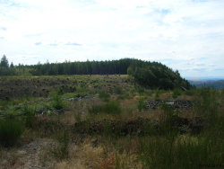 Photo of S McCully Mountain Rd, Lyons, OR 97358 (MLS # 739885)