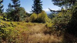 Photo of First Creek (T/L #808) Rd, Lebanon, OR 97355 (MLS # 740205)