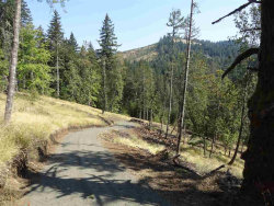 Photo of 24845 Hidden Valley (Across From) Rd, Philomath, OR 97370 (MLS # 742201)