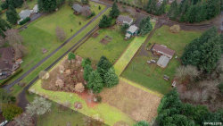 Photo of TL 1316 Riggs Hill Rd, Sweet Home, OR 97386 (MLS # 743626)