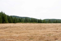 Photo of 45130 McCully Mountain (East of) Rd, Lyons, OR 97358 (MLS # 752143)