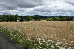 Photo of 11555 Helmick (Lot #1) Rd, Monmouth, OR 97361 (MLS # 752462)
