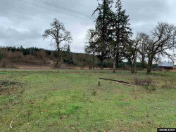 Photo of Tax #R36993 End of Salamander Rd, Jefferson, OR 97352 (MLS # 759768)