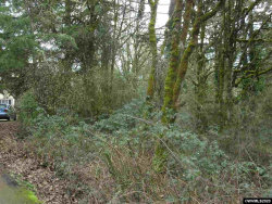 Photo of 2600 Vista (Lot# 4700) Pl NW, Albany, OR 97321 (MLS # 760025)
