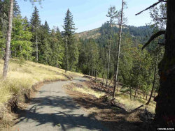 Photo of 24845 Hidden Valley (Across From) Rd, Philomath, OR 97370 (MLS # 760315)