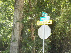 Photo of 5630 Highway 1 Highway, Mims, FL 32754 (MLS # 820437)