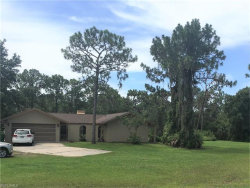 Photo of 17951 Wild Pepper CT, Punta Gorda, FL 33982 (MLS # 217046495)
