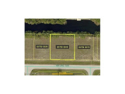 Photo of 2207 NW 3rd TER, Cape Coral, FL 33993 (MLS # 217058122)