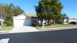 Photo of 15031 Hawks Shadow DR, Fort Myers, FL 33905 (MLS # 218015861)