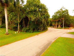 Photo of 4261 Silver Sword CT, North Fort Myers, FL 33903 (MLS # 218036352)