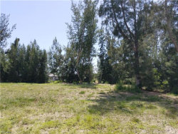 Photo of 2256 SW 20th AVE, Cape Coral, FL 33991 (MLS # 218043392)