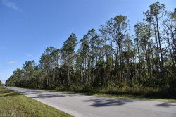 Photo of Naples, FL 34120 (MLS # 218048117)