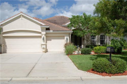 Photo of 3034 Via San Marco CT, Fort Myers, FL 33905 (MLS # 218060018)
