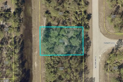 Photo of Lehigh Acres, FL 33974 (MLS # 218074965)