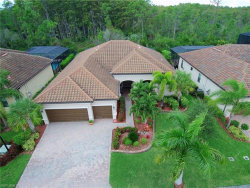 Photo of 11010 Longwing DR, Fort Myers, FL 33912 (MLS # 219070913)