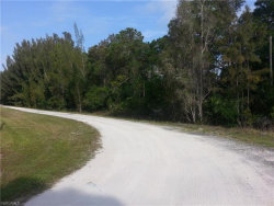 Photo of 6780 Chipper LN, North Fort Myers, FL 33917 (MLS # 220004583)
