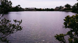 Photo of 4204 NW 22nd ST, Cape Coral, FL 33993 (MLS # 220006598)
