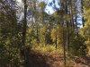 Photo of Lot 41 Kimrick Drive, Millbrook, AL 36054 (MLS # 409180)
