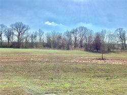 Photo of Lot 9 Blk A River Farms Lane, Unit 9, Millbrook, AL 36054 (MLS # 415172)