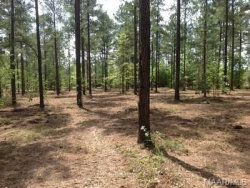 Photo of 2 LITTLE Road, Tallassee, AL 36078 (MLS # 429573)