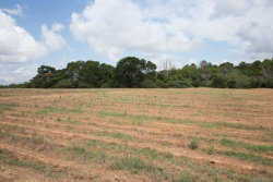 Photo of 5.5 ACRES COUNTY ROAD 636 ., Chancellor, AL 36316 (MLS # 433831)