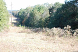 Photo of TBD OLD NEWTON Road, Daleville, AL 36322 (MLS # 436629)