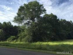 Photo of TBD Private Road 1703 ., Enterprise, AL 36330 (MLS # 438988)