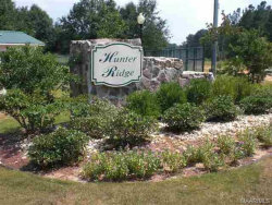 Photo of Lot 25 County Road 172 ., New Brockton, AL 36351 (MLS # 439017)
