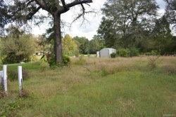 Photo of 614 Wildwood Loop, Daleville, AL 36322 (MLS # 444480)