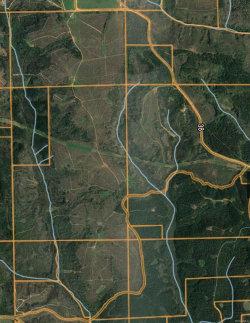 Photo of 000 County RD 38 Road, Prattville, AL 36067 (MLS # 444789)