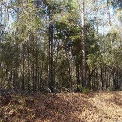 Photo of 0 County Road 646 ., Enterprise, AL 36318 (MLS # 444835)