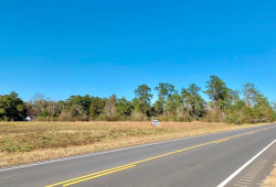 Photo of 8 Acres E St Highway 52 ., Geneva, AL 36340 (MLS # 444985)