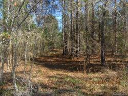 Photo of 0 Rocky Creek Road, Cottonwood, AL 36320 (MLS # 445162)