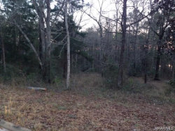Photo of TBD HICKORY TREE Lane, Daleville, AL 36322 (MLS # 449971)