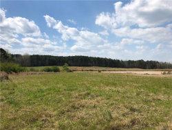 Photo of 79.76 acres Burt Mill Road, Tallassee, AL 36078 (MLS # 450223)