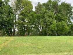 Photo of 289 River Forest Court, Prattville, AL 36054 (MLS # 450995)