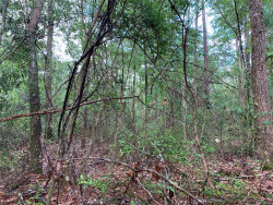 Photo of 2.32 Acres McDougald Street ., Geneva, AL 36340 (MLS # 452267)